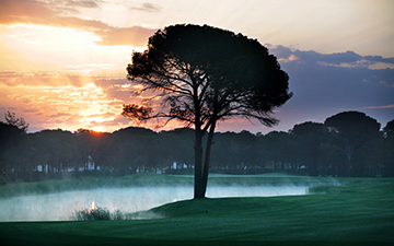 THE MONTGOMERIE MAXX ROYAL GOLF COURSE